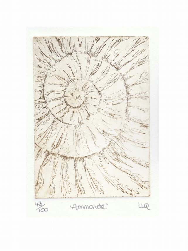Etching no.43 of an ammonite fossil in an edition of 100