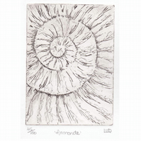 Etching no.45 of an ammonite fossil in an edition of 100