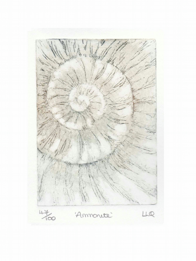 Etching no.47 of an ammonite fossil in an edition of 100
