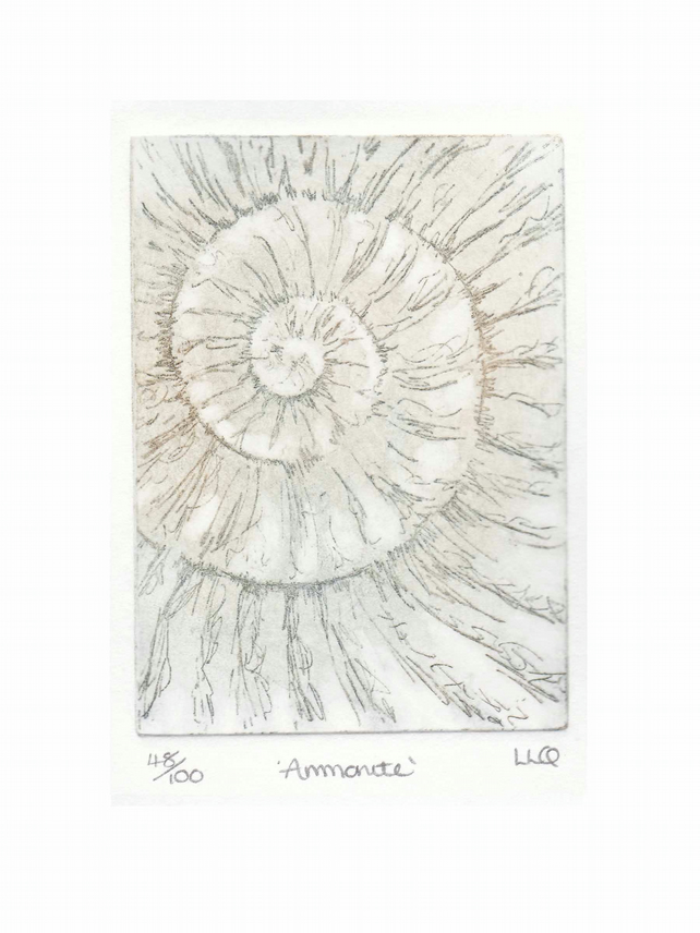 Etching no.48 of an ammonite fossil in an edition of 100