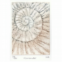 Etching no.49 of an ammonite fossil in an edition of 100