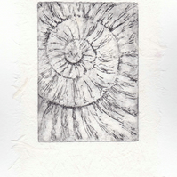 Etching no.51 of an ammonite fossil with chine colle in an edition of 100