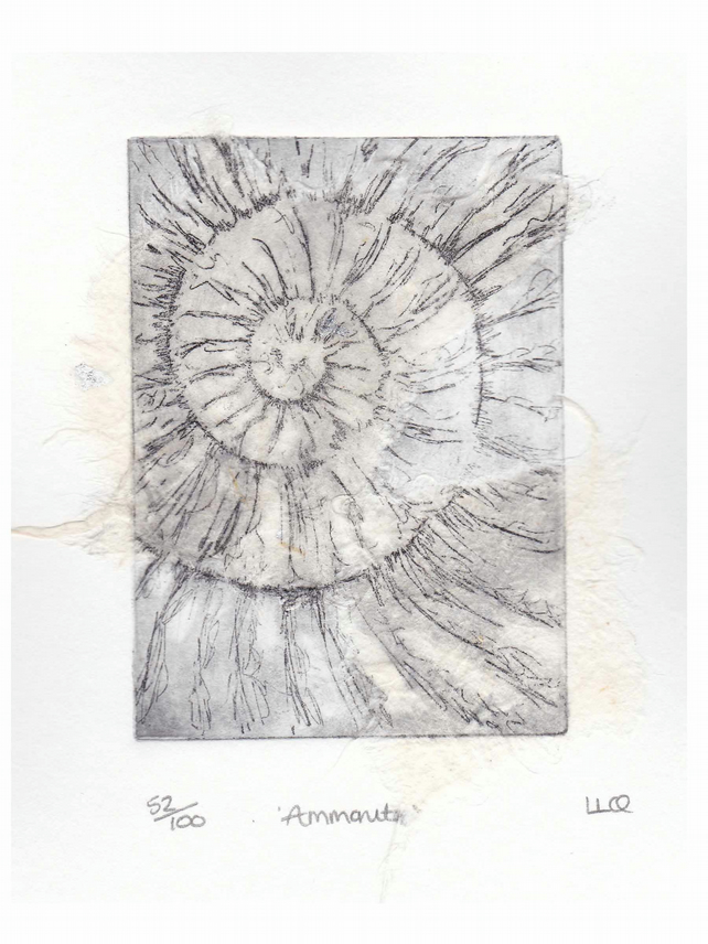 Etching no.52 of an ammonite fossil with chine colle in an edition of 100