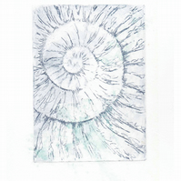 Etching no.53 of an ammonite fossil with chine colle in an edition of 100