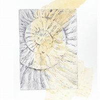 Etching no.59 of an ammonite fossil with chine colle in an edition of 100