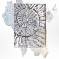 Etching no.61 of an ammonite fossil with chine colle in an edition of 100
