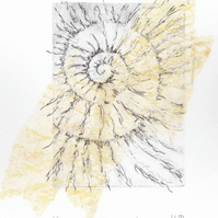 Etching no.66 of an ammonite fossil with mixed media in an edition of 100