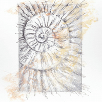 Etching no.67 of an ammonite fossil with mixed media in an edition of 100
