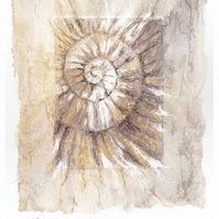 Etching no.69 of an ammonite fossil with mixed media in an edition of 100