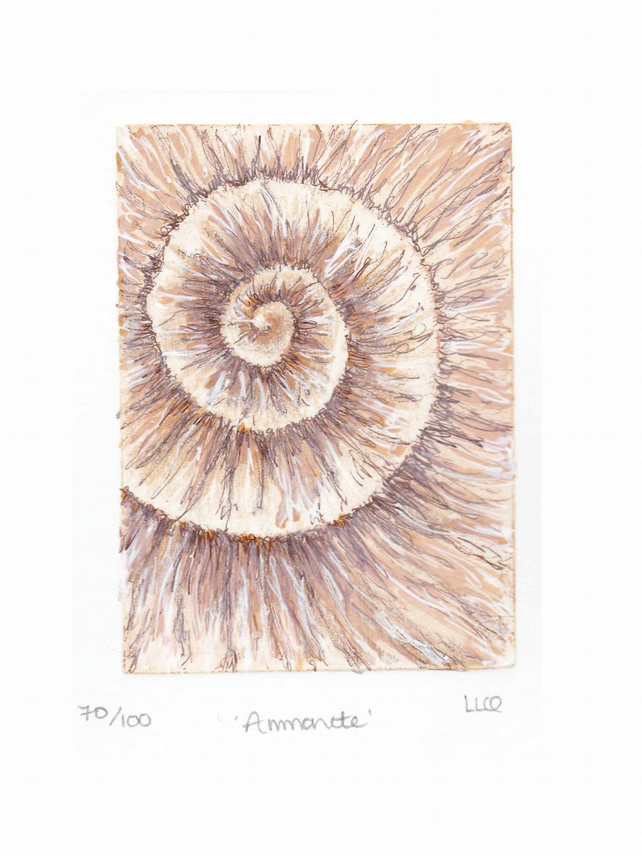 Etching no.70 of an ammonite fossil with mixed media in an edition of 100