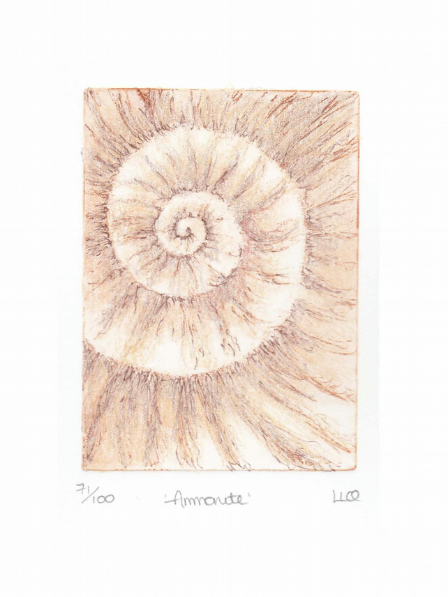 Etching no.71 of an ammonite fossil with mixed media in an edition of 100