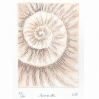 Etching no.72 of an ammonite fossil with mixed media in an edition of 100