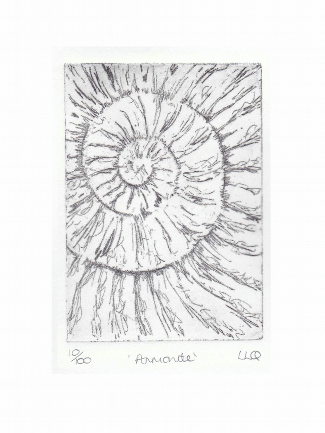 Etching no.10 of an ammonite fossil in an edition of 100