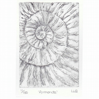 Etching no.11 of an ammonite fossil in an edition of 100