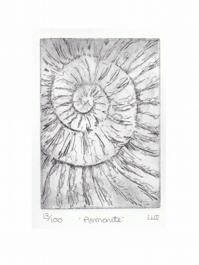 Etching no.13 of an ammonite fossil in an edition of 100