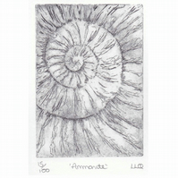 Etching no.15 of an ammonite fossil in an edition of 100