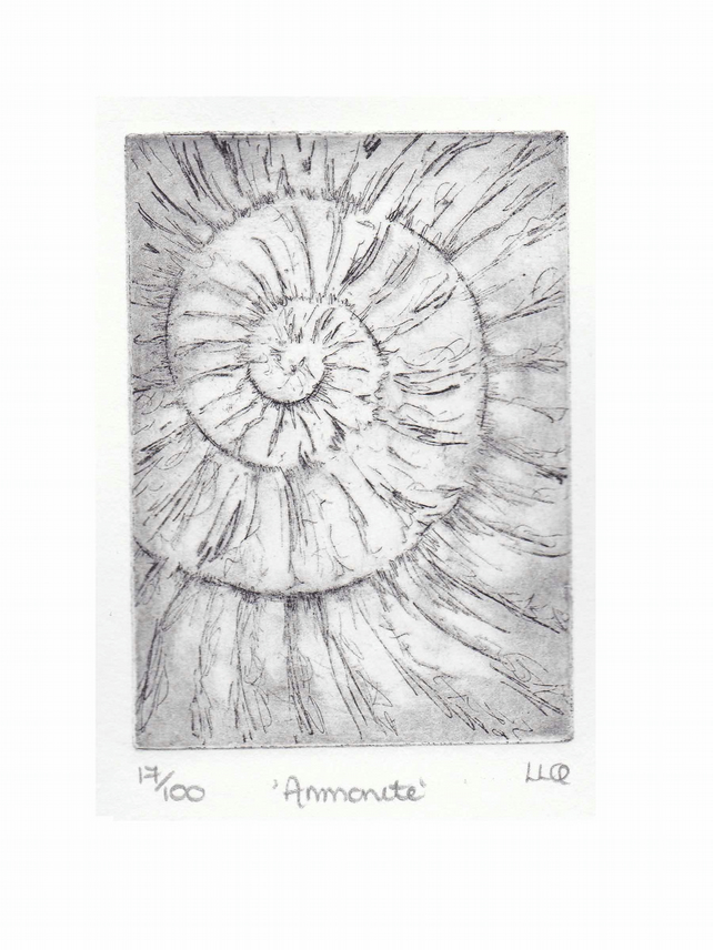 Etching no.17 of an ammonite fossil in an edition of 100