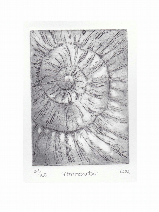 Etching no.18 of an ammonite fossil in an edition of 100