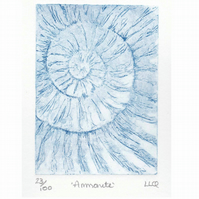 Etching no.23 of an ammonite fossil in an edition of 100