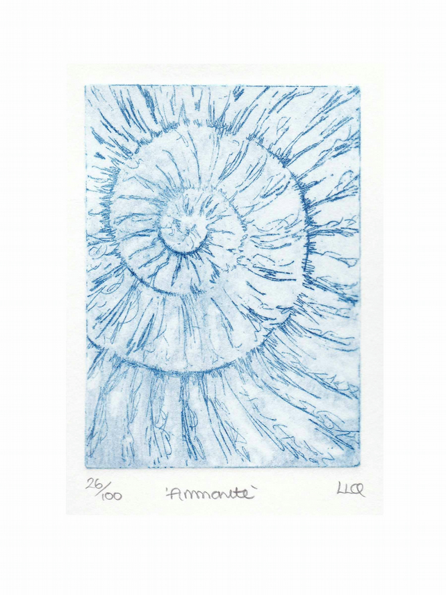 Etching no.26 of an ammonite fossil in an edition of 100