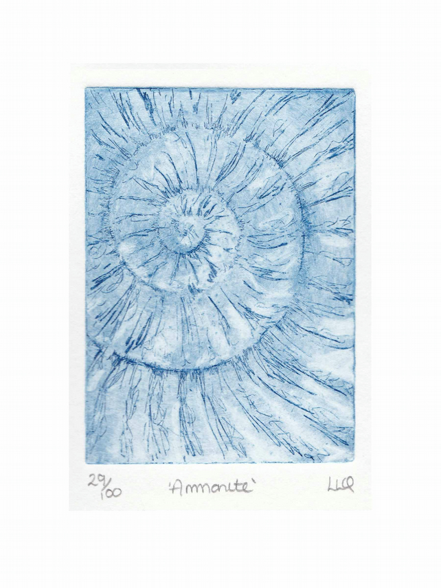 Etching no.29 of an ammonite fossil in an edition of 100