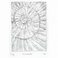 Etching no.2 of an ammonite fossil in an edition of 100