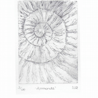 Original ammonite fossil etching no.3 in an edition of 100