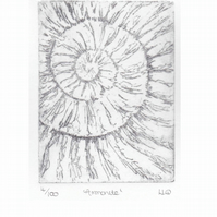 Etching no.4 of an ammonite fossil in an edition of 100