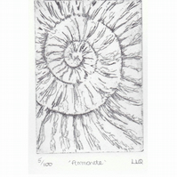 Etching no.5 of an ammonite fossil in an edition of 100