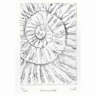 Etching no.6 of an ammonite fossil in an edition of 100