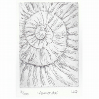 Etching no.7 of an ammonite fossil in an edition of 100