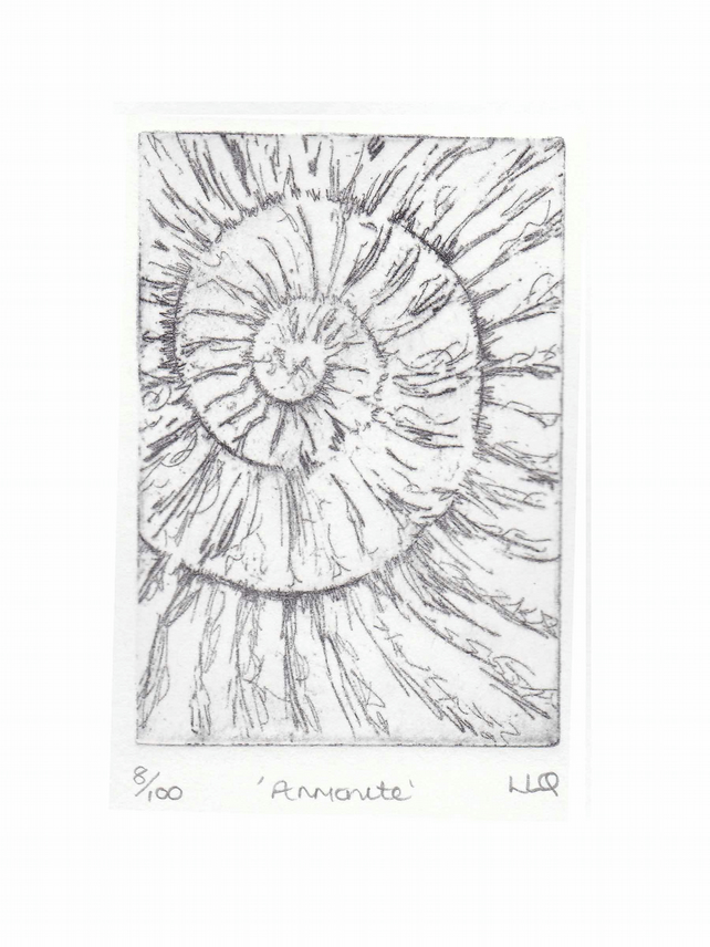 Etching no.8 of an ammonite fossil in an edition of 100