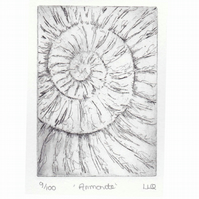 Etching no.9 of an ammonite fossil in an edition of 100