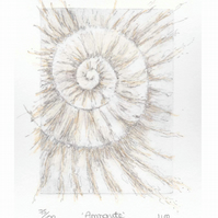 Etching no.75 of an ammonite fossil with mixed media in an edition of 100