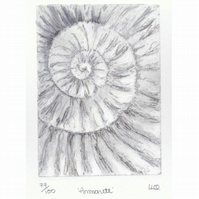 Etching no.77 of an ammonite fossil with mixed media in an edition of 100