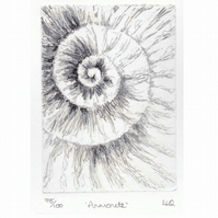 Etching no.78 of an ammonite fossil with mixed media in an edition of 100
