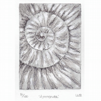 Etching no.81 of an ammonite fossil with mixed media in an edition of 100