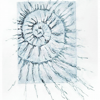 Etching no.99 of an ammonite fossil with mixed media in an edition of 100