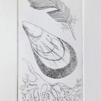 Beach treasures III original etching print of a feather, mussel shell & seaweed