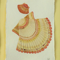 Original watercolour scallop shell painting