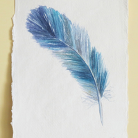 Feather painting original watercolour illustration