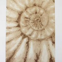 Original solar ammonite fossil etching no.4 in a limited edition of 95