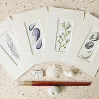 Set of four ink and watercolour nature studies, feather, pebbles, seaweed, shell