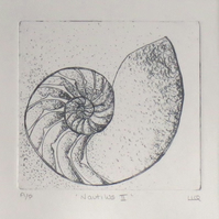 Nautilus etching print ready to frame sea shell cross section