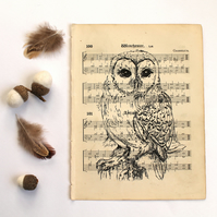 Barn Owl Gocco Print on Vintage Sheet Music, Bird Print