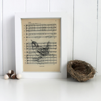 Standing Wren Gocco Print, Bird Print on Vintage Sheet Music British Bird