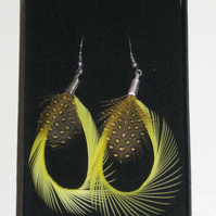 YELLOW and Black Curled Biot Feather Silver Plated Handmade EARRINGS