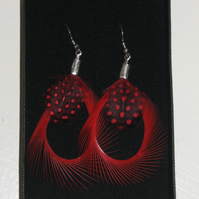 RED and Black Curled Biot Feather Silver Plated Handmade EARRINGS