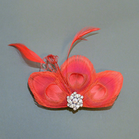 Red Peacock Feather Hair Clip Bridesmaids Fascinator Wedding 'Lizbeth'