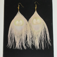 Nude Peacock Eye Feather EARRINGS Gold Plated Golden Cream